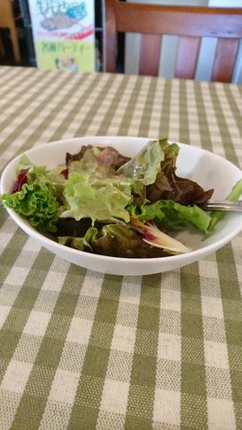 20161122_02_salad