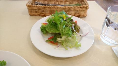 20161128_02_salad